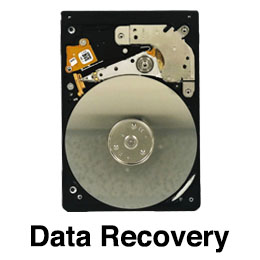 Data Recoery geeksstop homeicon